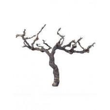 Branche décorative - grapewood