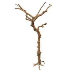 Tronc décoratif - bois...