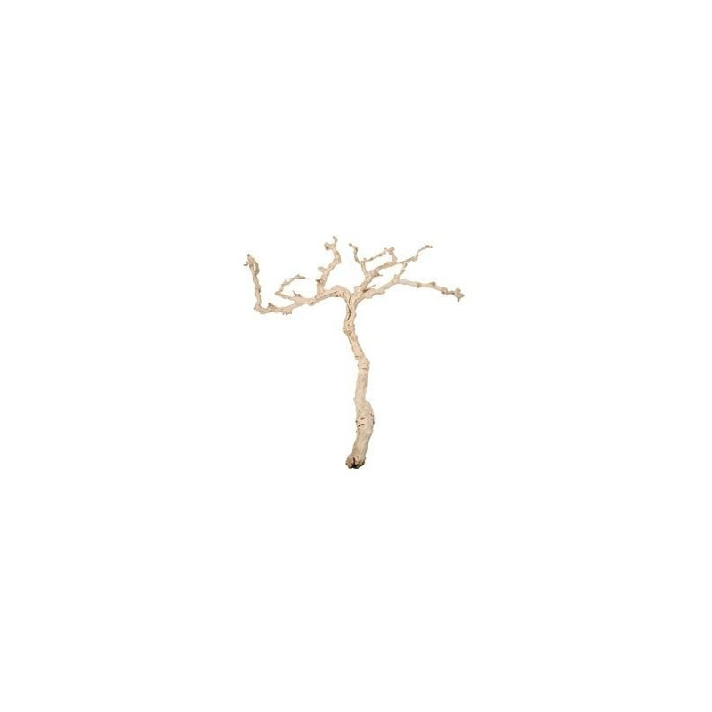 Branche bois flotte decoration maison design for Vente de bois flotte