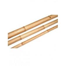 Canne de bambou naturel -...