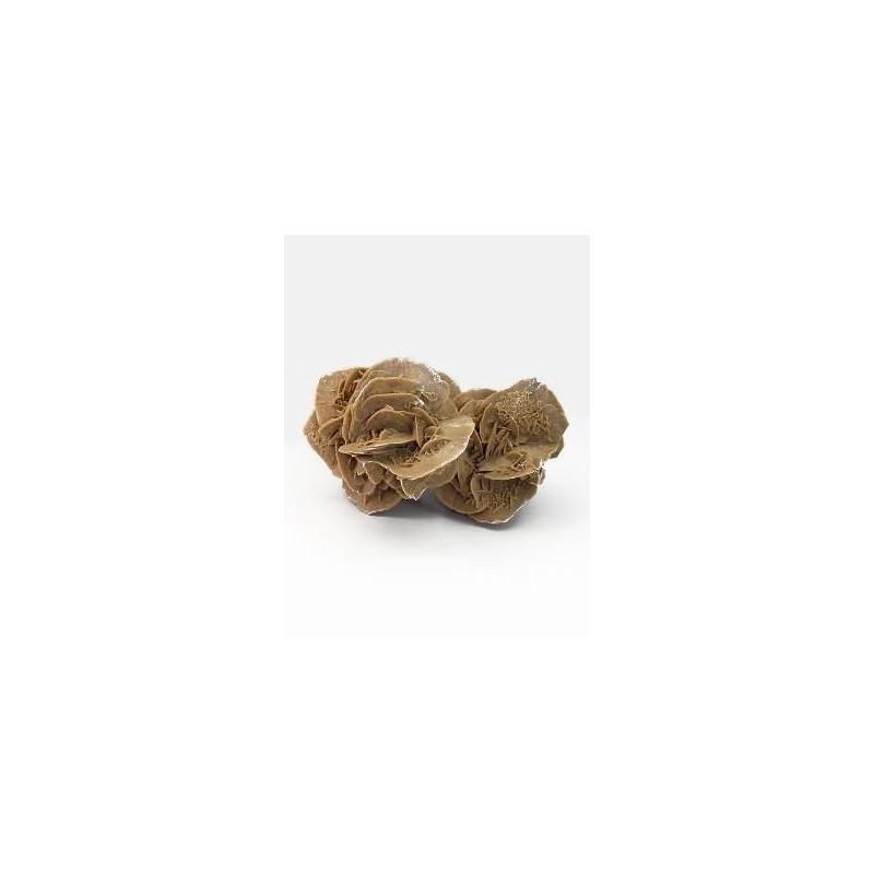 fleur du d sert rose des sables racyne. Black Bedroom Furniture Sets. Home Design Ideas