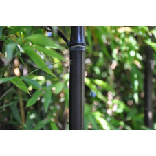 tige du bambou noir