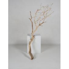 bois flotté naturel - 120 cm