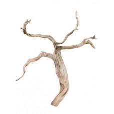 bois flotté ghostwood 40 cm
