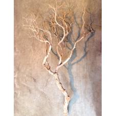 bois flotté naturel 210 cm