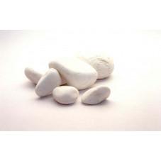Galets blancs 6/10 cm