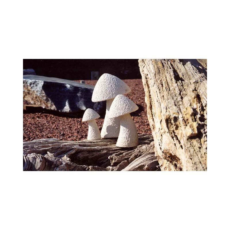 Champignons grés