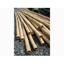 Cannes de bambou deco 4 m diam. 4cm