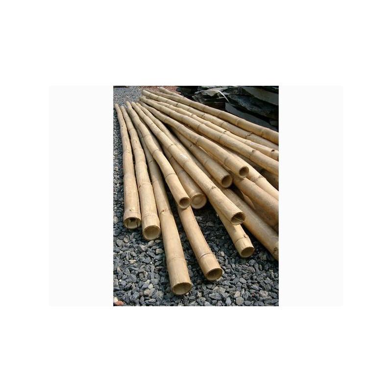 Cannes de bambou deco 3 m diam 8 cm